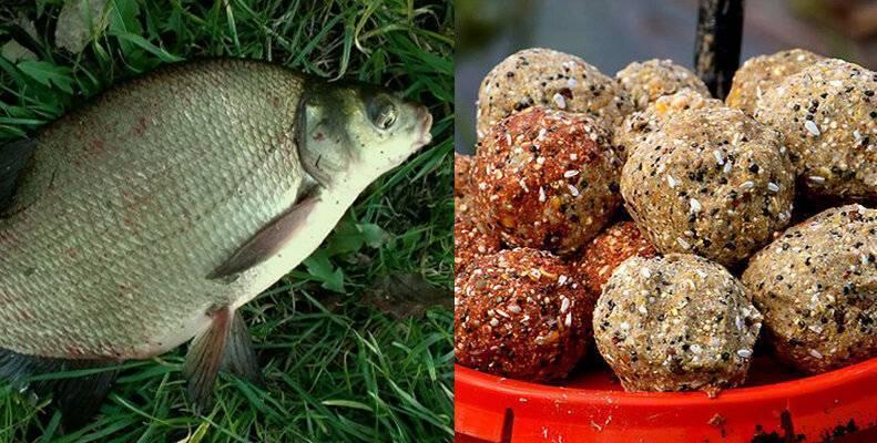 Что нужно добавить в прикормку для леща, чтобы рыбалка удалась на «славу»