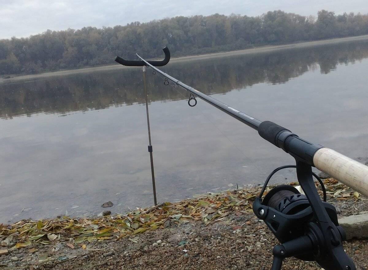 Ловля плотвы на фидер весной, летом и осенью – прикормка, приманки, оснастка, техника ловли