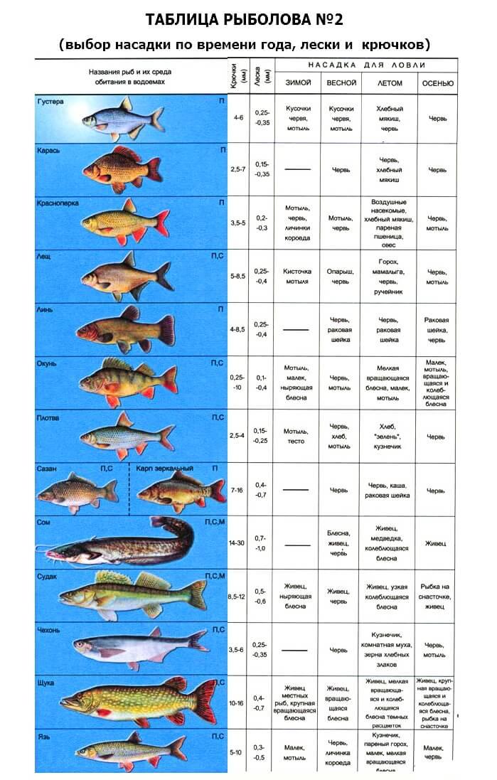 Рыболовные крючки и их размеры: обзор всех классификаций