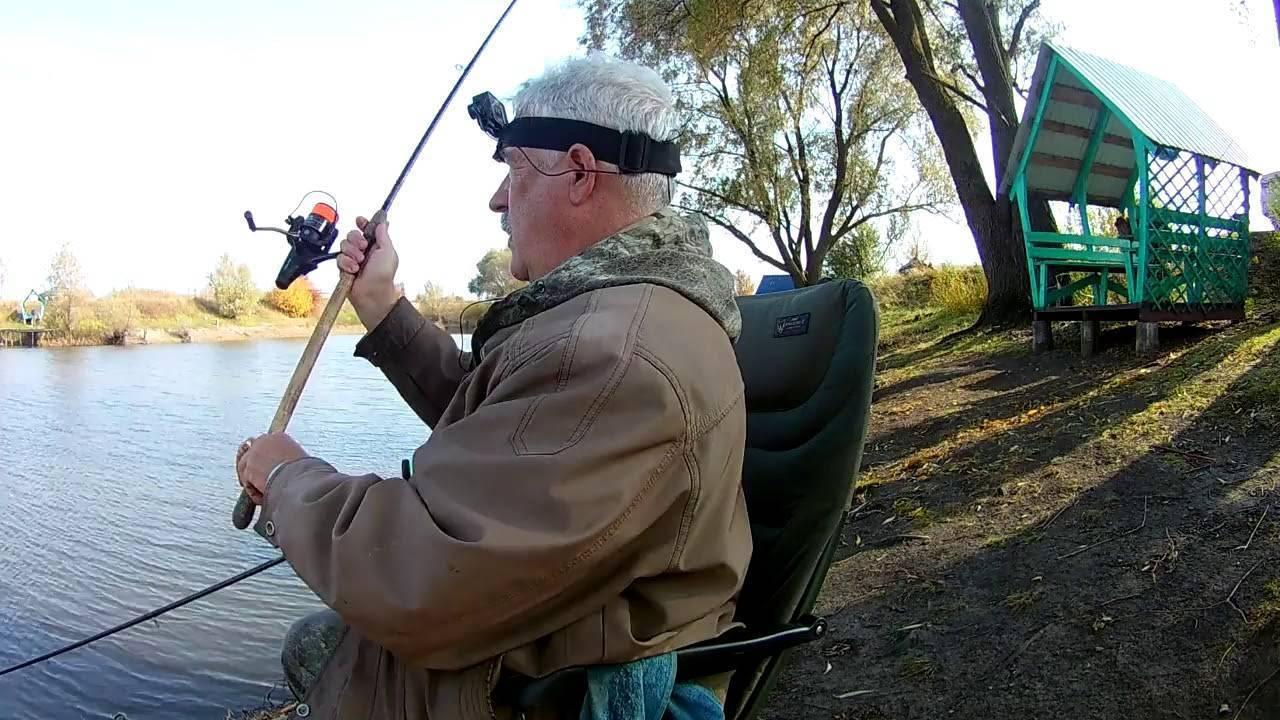 Ловля карпа осенью: на что ловить, лучшие наживки, особенности осенней рыбалки