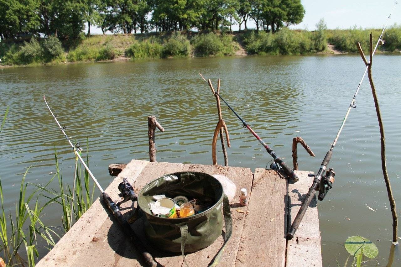 Рыбалка в ульяновске и ульяновской области: юшанское и барышский район, озерки и белое озеро, сура и другие рыболовные места