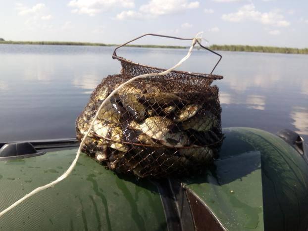 Firstfisher.ru – интернет-журнал о рыбалке и рыболовах. рыбалка в пензенской области