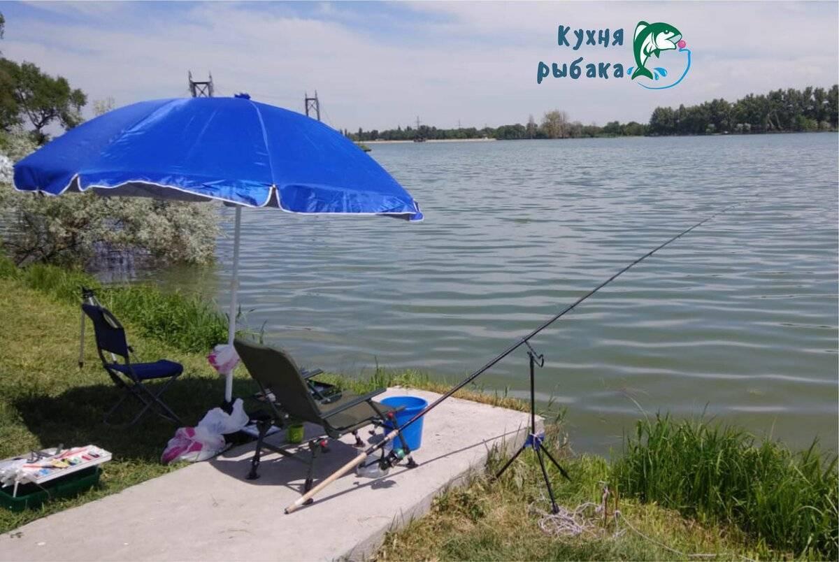 Налог на рыбалку — 2000 рублей: вариант обуздать страсть 20 миллионов рыбаков в россии