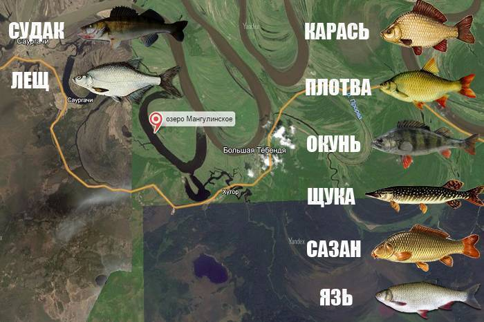 Рыбалка в Раково — отзывы, описание водоемов