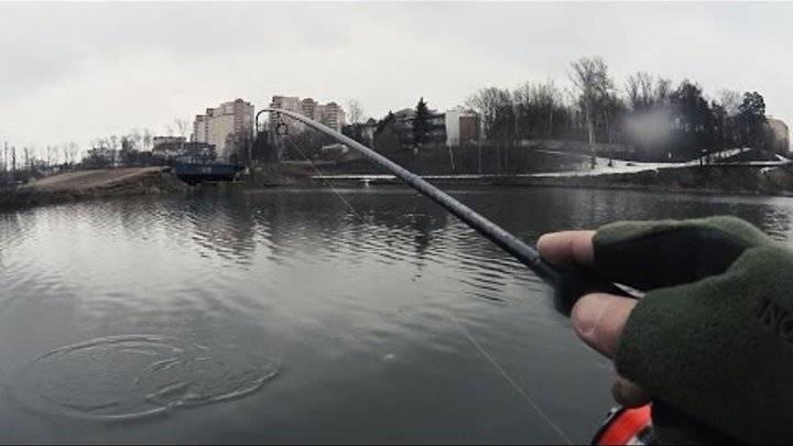 Платная рыбалка в красногорске