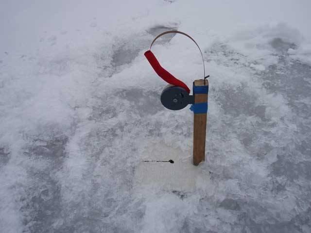 Ловля налима зимой на жерлицы: оснащение, тактика и техника ловли