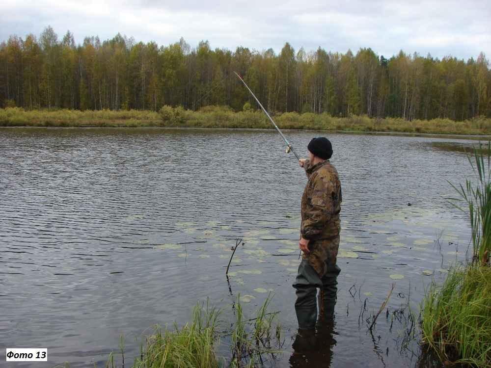 Ловля щуки на живца удочкой с поплавком и без него