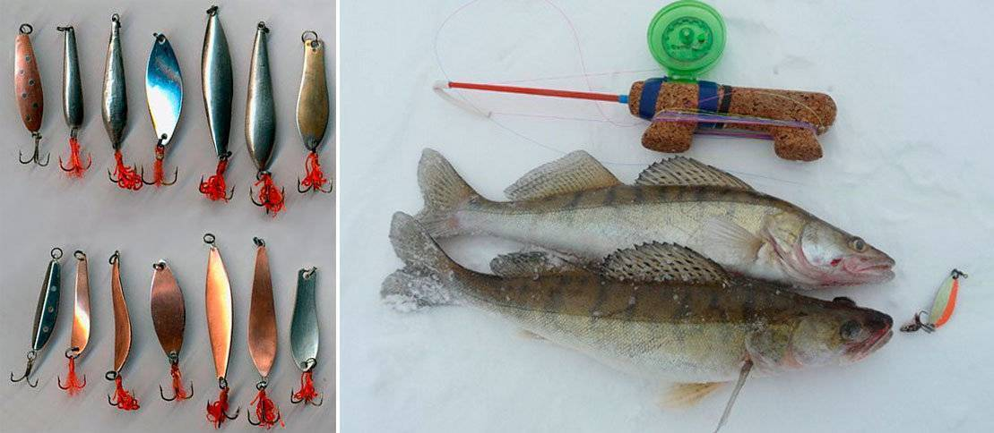 Ловля судака зимой в феврале: как ловить на течении, снасти для рыбалки