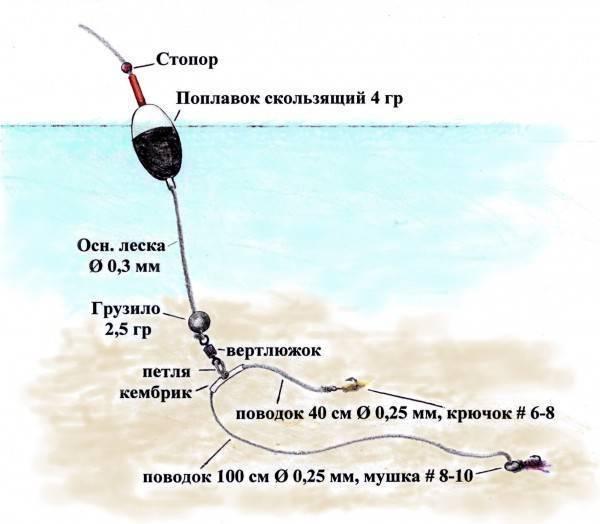 Ловля форели поплавочной удочкой - выбор рабочей наживки, техника