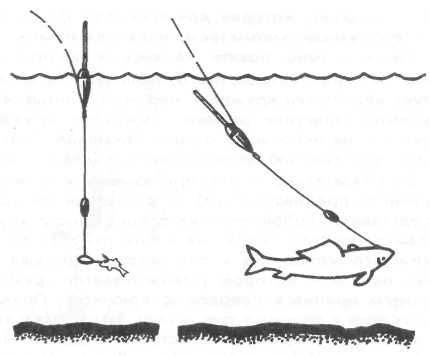 Правильная оснастка спиннинга на щуку – снасти, крепление приманок, поводки