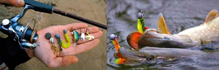 Как ловить на спиннинг начинающему и поймать рыбу