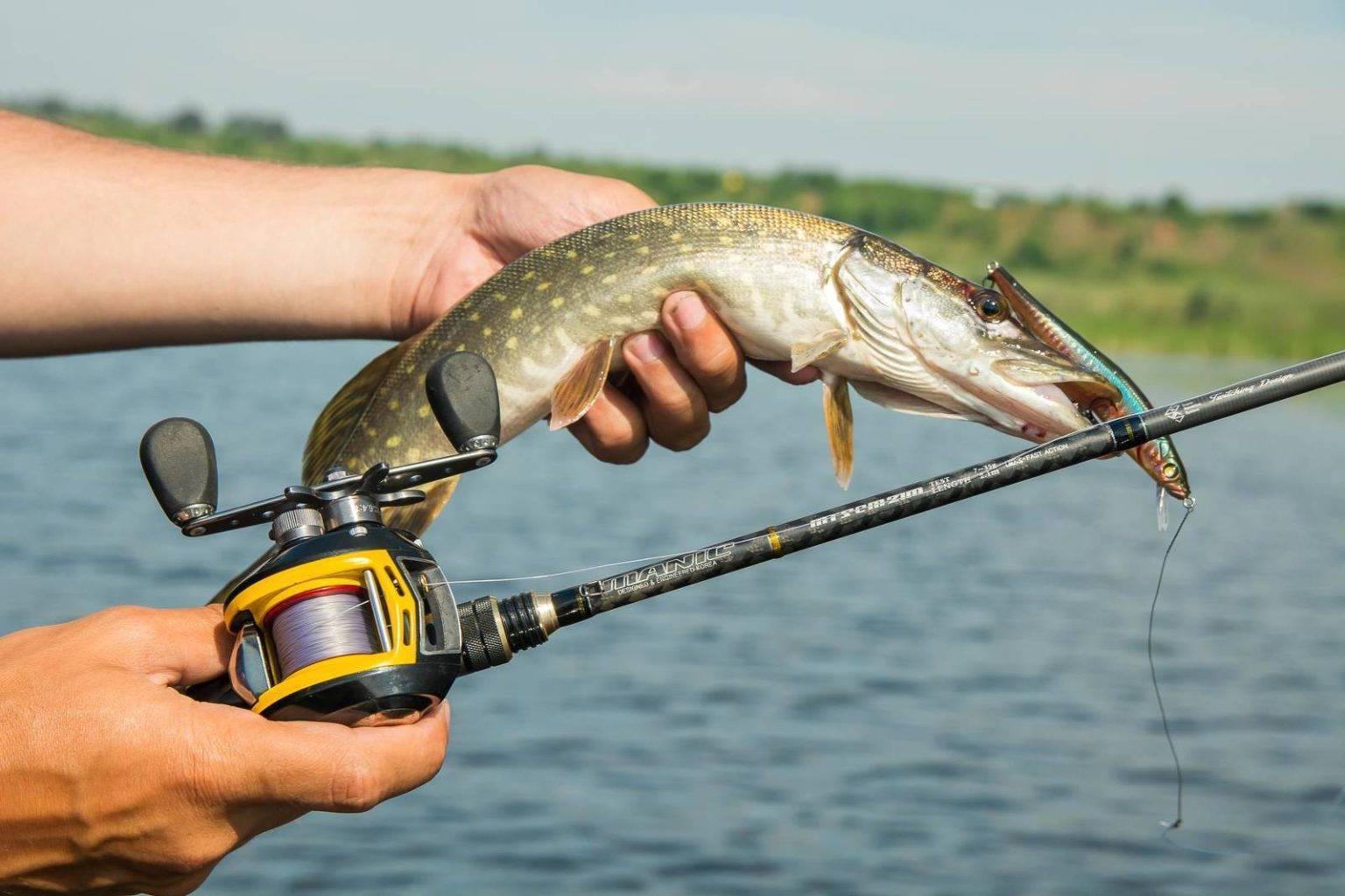 Рыбные места в астраханской области и астрахани
