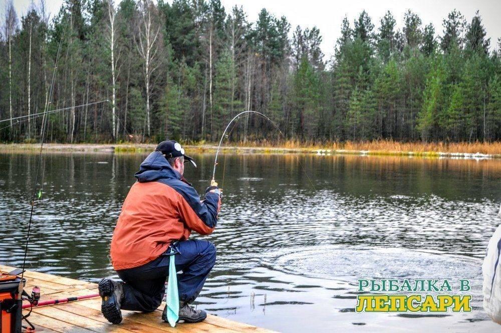 Рыбалка в спб: лучшие места для ловли в санкт-петербурге, какие рыбы водятся
