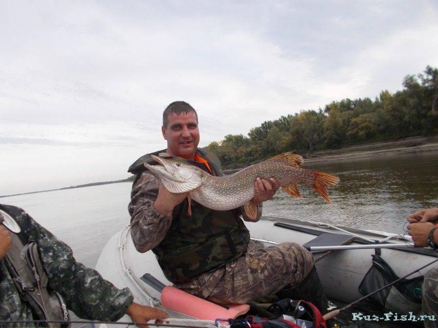 Рыбалка в кемеровской области – самые уловистые места и видовое разнообразие рыб