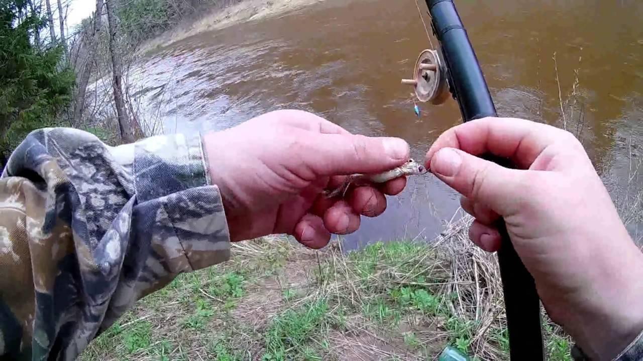 Рыбалка в апреле: кого, на что и как ловить