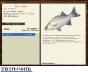 Полосатый окунь - striped bass