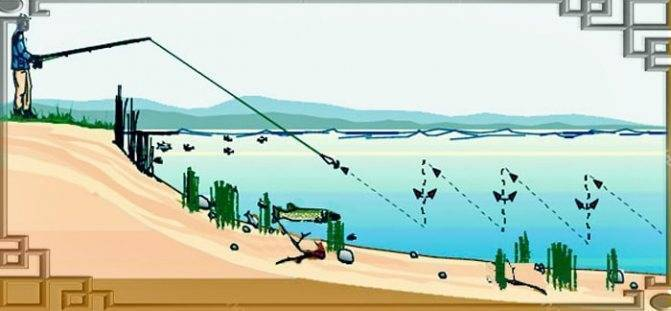 Как поймать большую рыбу: принципы, подготовка, советы