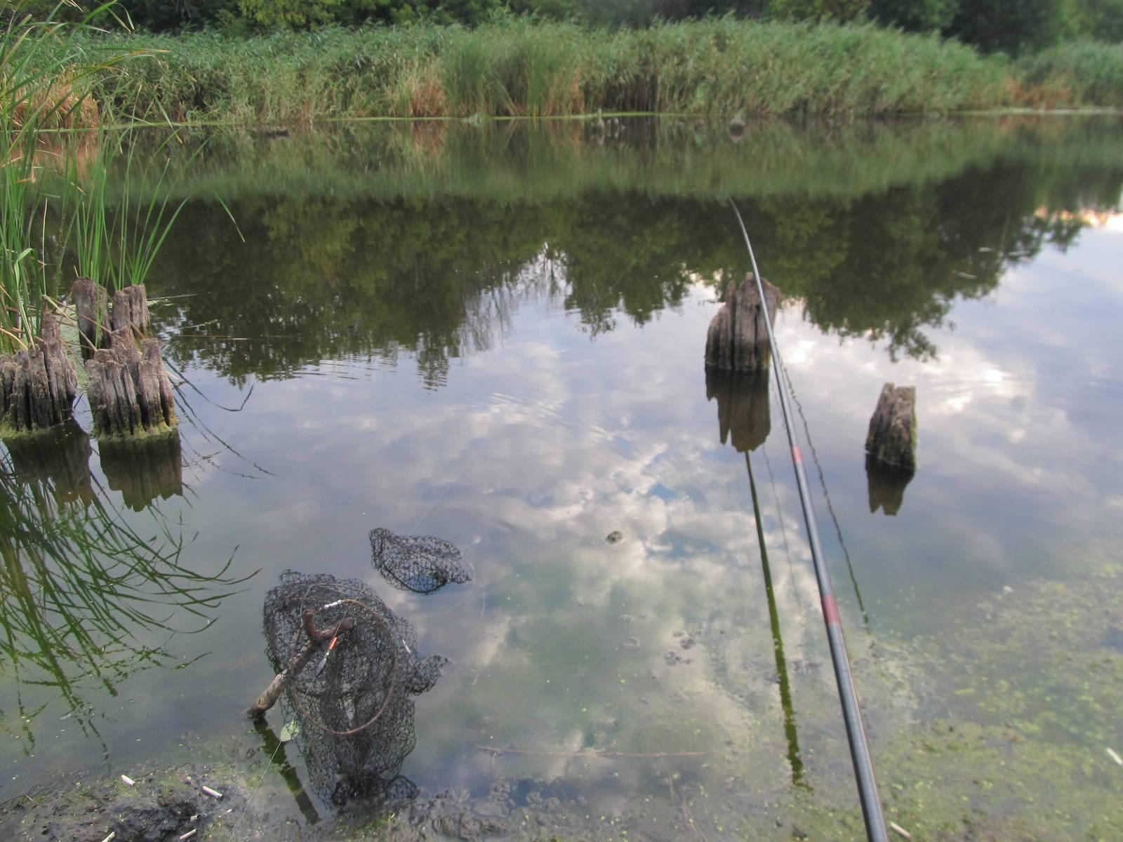 Рыбалка на карася – ловля зимой, весной, летом и осенью + видео и фото