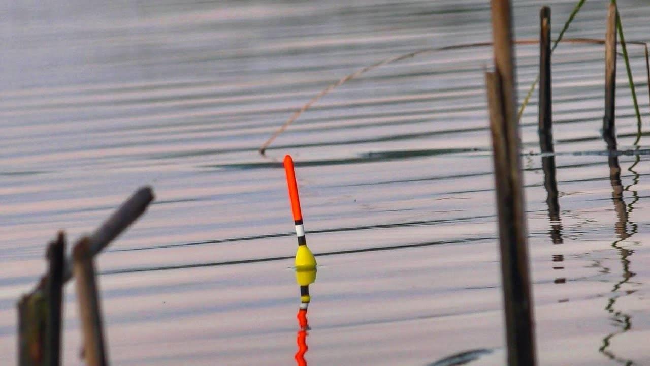 Ловля щуки на удочку с поплавком