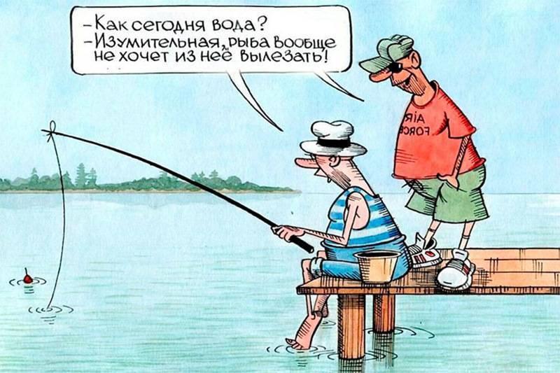Прикольные анекдоты про рыбаков и рыбалку