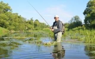 Рыбалка во владимирской области и во владимире - fishingwiki