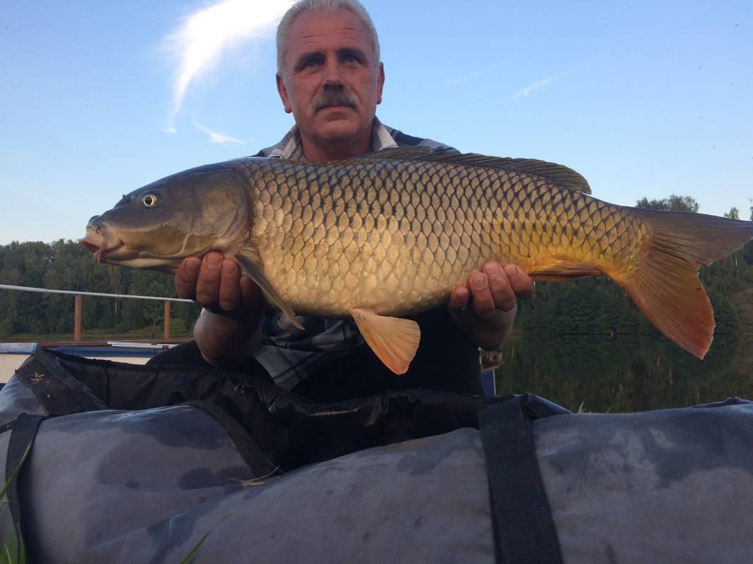 Рыбалка ульяновск - #13 - рыбалка в ульяновске