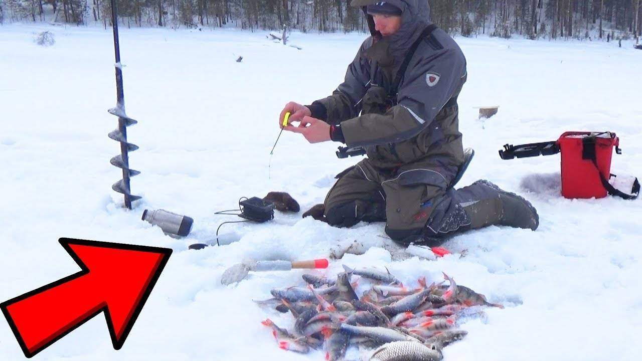 Как правильно выбрать экипировку и снасти для зимней рыбалки