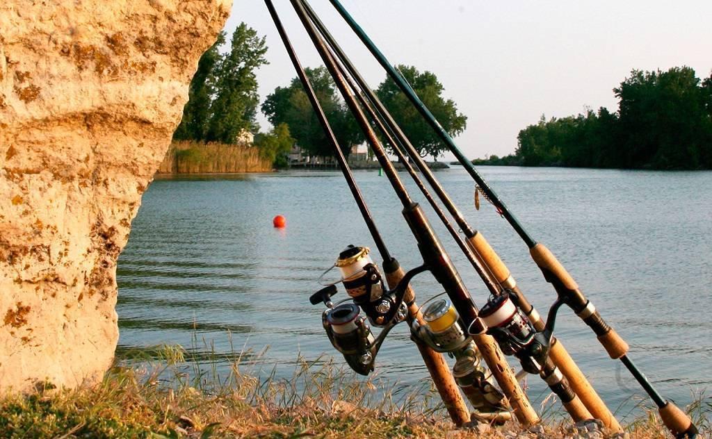 ⭐️рейтинг лучших спиннингов для джига 2020 года для тех, кто рыбачит в удовольствие