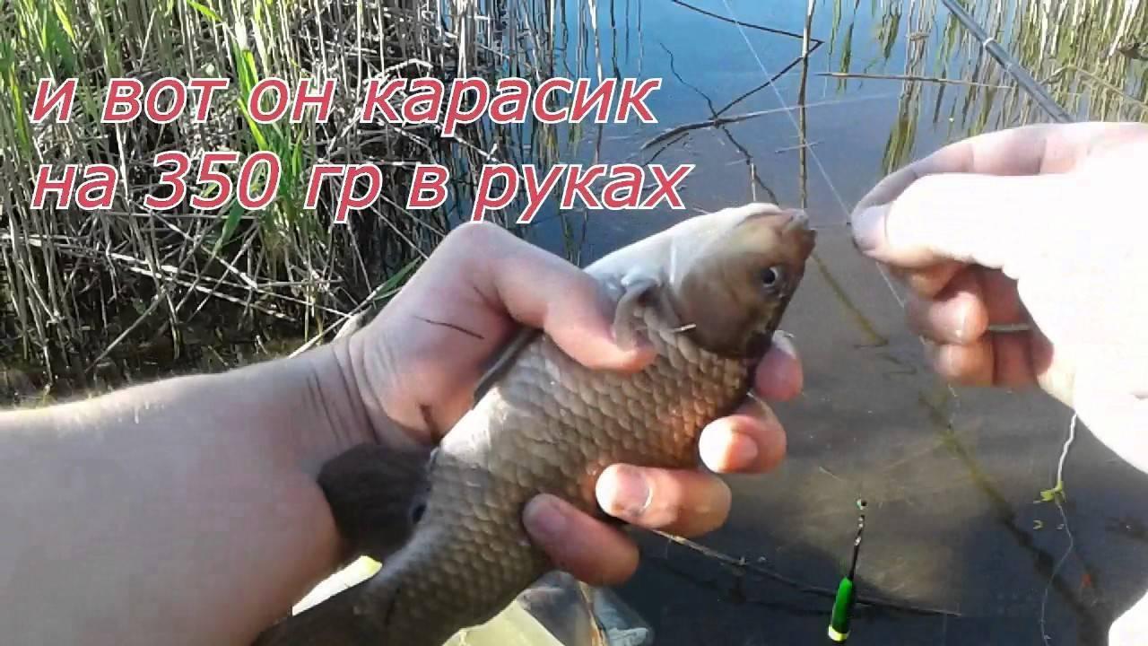 Рыболовная снасть пробка своими руками: инструкция и советы