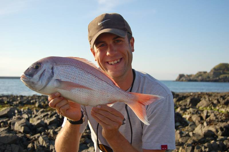Рыба карась: описание и особенности искусственного разведения