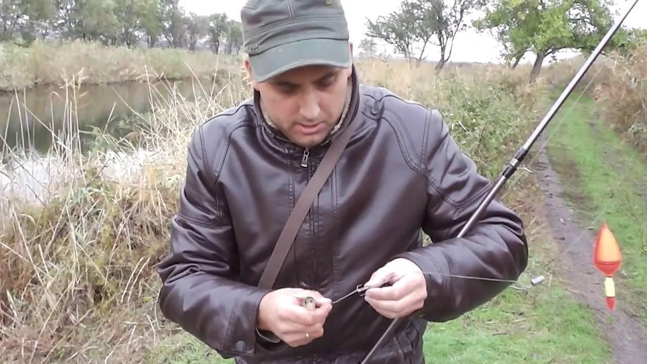 Как ловить щуку в октябре: где искать, какие снасти применять, щучьи повадки