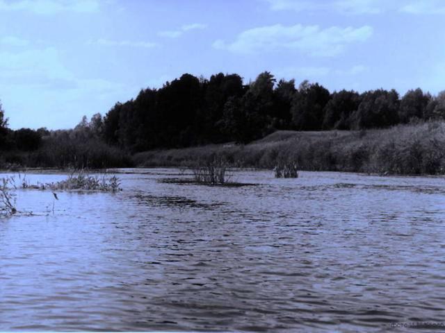 Великое озеро (владимирская область) — место для рыбака