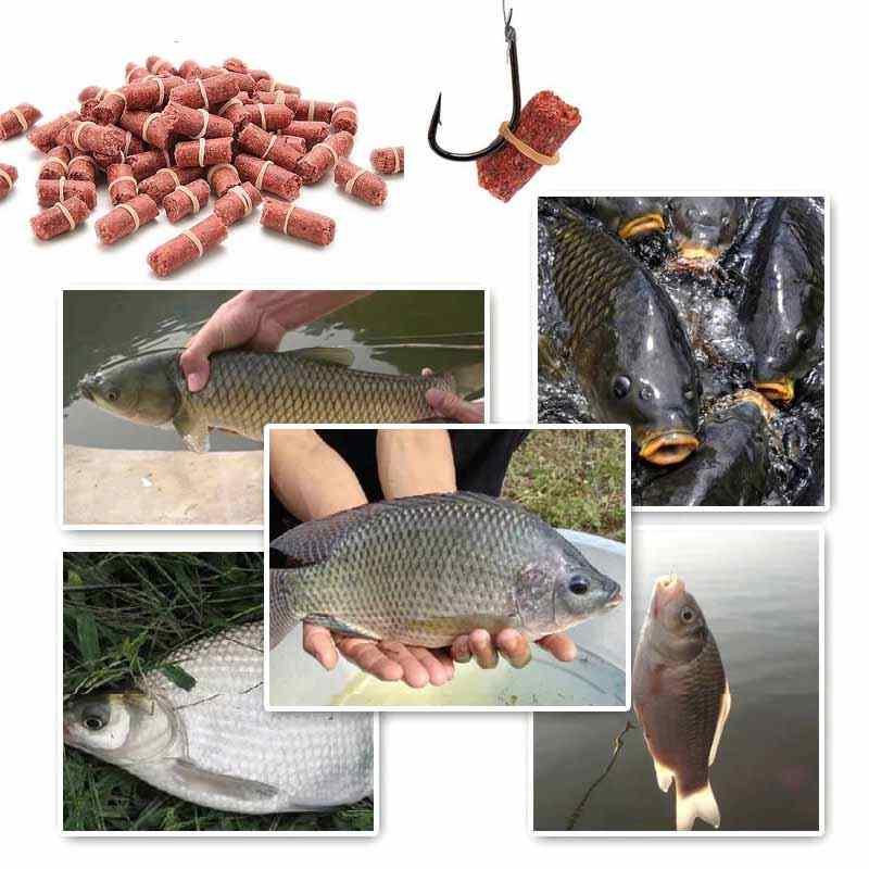 Ароматизаторы для рыбалки своими руками и лучшие ароматизаторы