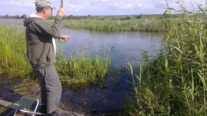 Рыбалка в саратовской области: лучшие платные и бесплатные водоёмы региона