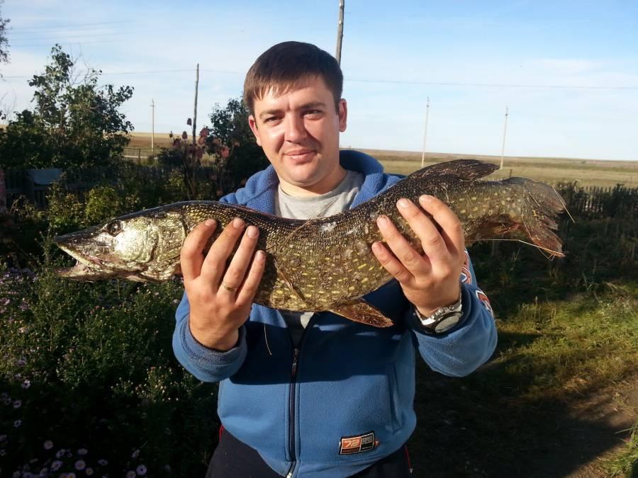 Рыбалка на реке ишим: каталог рыболовных туров