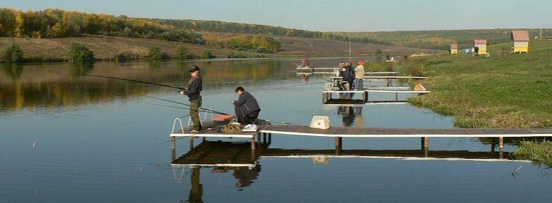 Места для рыбалки в ростовской области – платная и бесплатная рыбалка!