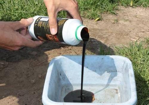 Меласса: основные виды для рыбалки, как сделать своими руками, где купить