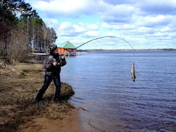 Плещеево озеро — описание, природа, история, рыбалка и отдых, экология, фото и видео