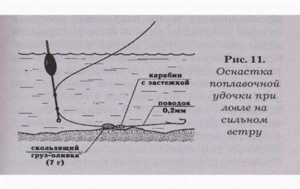 Ловля карпа на поплавочную удочку: снасть, насадки и прикормка, выбор места ловли