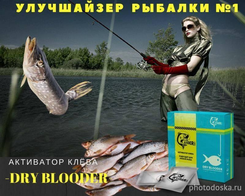 Активатор клева dry blooder сухая кровь: инструкция, где купить и отзывы