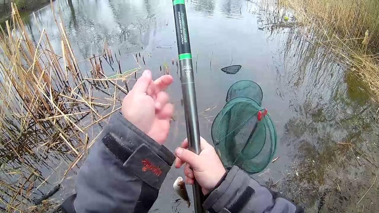 Как правильно зимой ловить плотву на течении