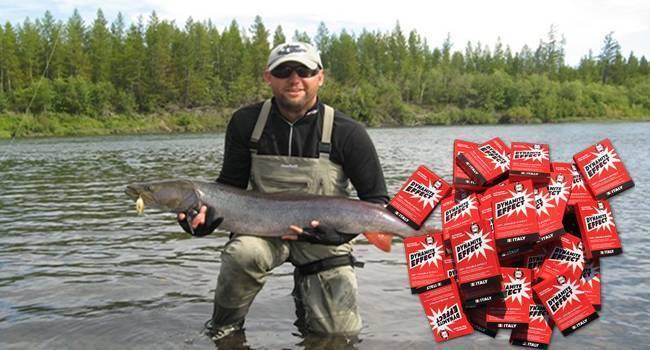 Dynamite effect активатор клева: быстро и эффективно привлечет рыбу