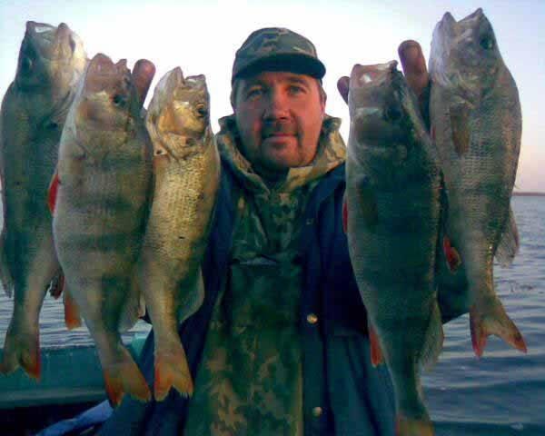 Рыбалка в ростове-на-дону — лучшие рыболовные базы в ростовской области, как ловить весной