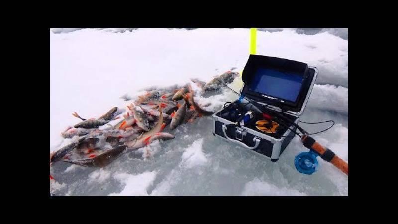 Выбор подводной камеры для зимней рыбалки