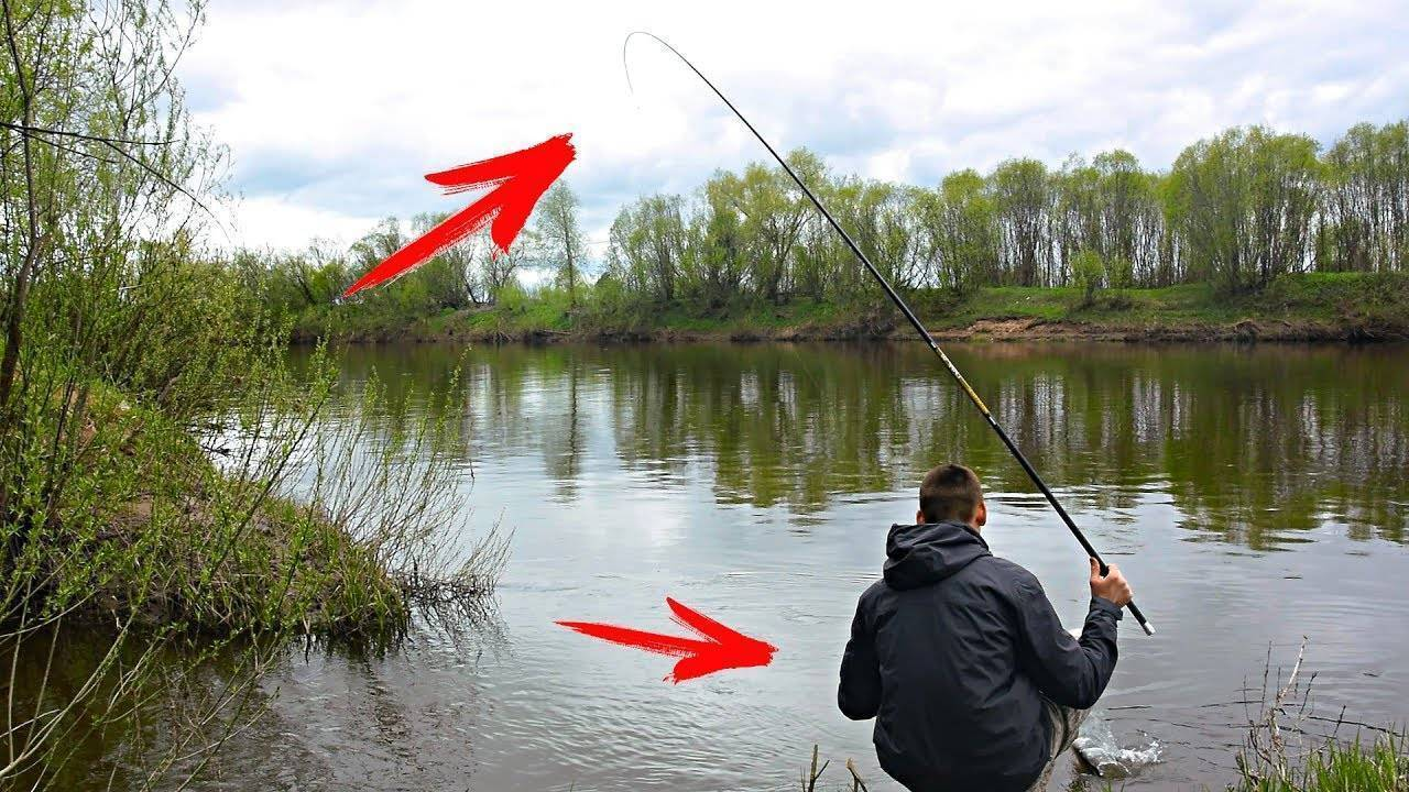 Ловля щуки на живца на поплавочную удочку