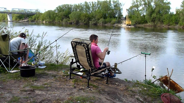 Рыболовные базы на дону в ростовской области с проживанием, обзор лучших