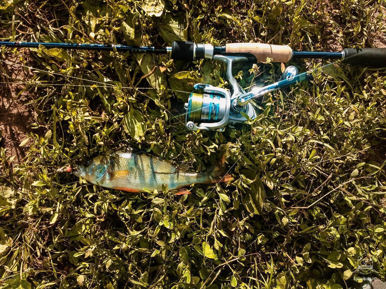 Как избавиться от обмерзания лески на зимней рыбалке?! действенные методы