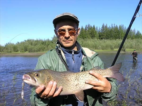 Рыба ленок: среда обитания, снасти и техника ловли, особенности поведения с фото
