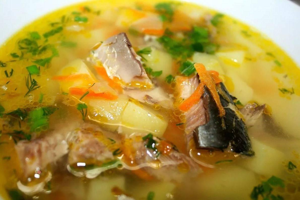 Суп из сайры консервированной: 5 рецептов с фото, калорийность