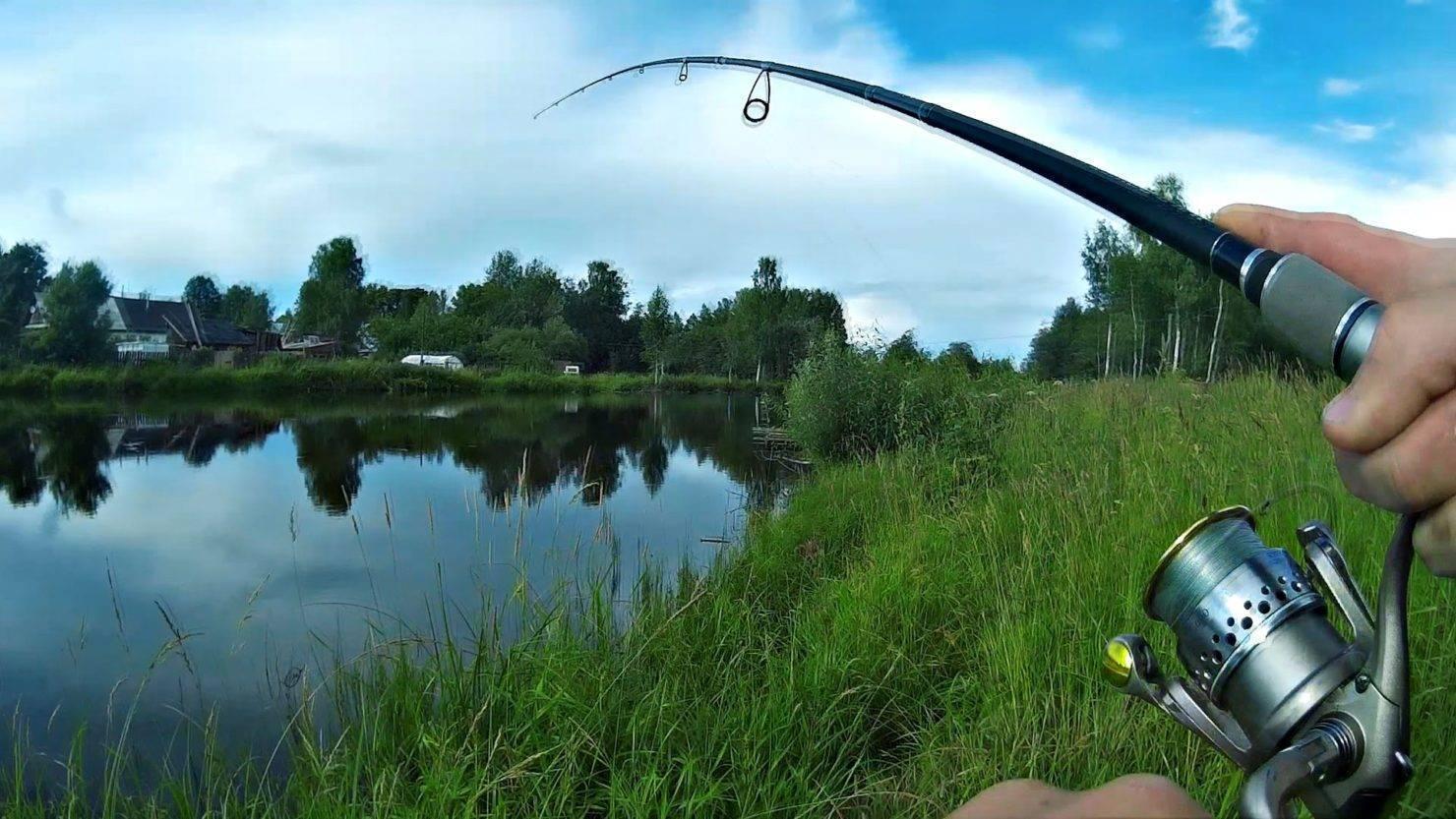 Лучшие и самые популярные воблеры для ловли щуки | про рыбалку - секреты рыбной ловли